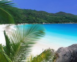 Seychelles Islands, Africa, Tropical lagoon