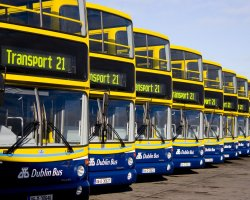 Smart Holiday, Dublin Public Transport, Busses Parked