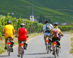 Sport Destinations, Mosel wine bike tour, Germany
