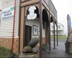 Strangest Museums, Phalluses Museum, Iceland, Entrance