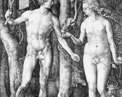 Metropolitan Museum of Art, New York, USA, Adam and Eve by Albrecht Durer