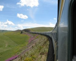 Railroad Holiday, Trans Siberian Railway, Landscape from the train