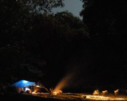 Trend Holiday, Borneo Safari, Nightcamp
