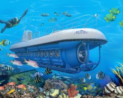 Underwater Tourism, Sub on reef landscape