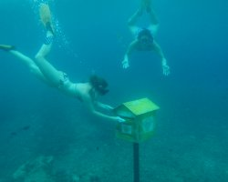 Underwater Tourism, Vanuatu Underwater Post office