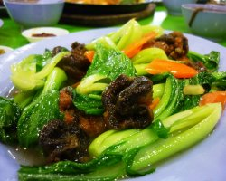 Vegetarian Tourists Destinations, Chinese vegetarian food