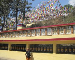 Relaxation Holiday, Dharamsala, India, Prayer Wheels from Main Temple