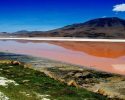 Nature Weirdness, Bolivia, Laguna Colorada landscape