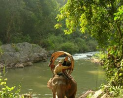 Wild Holiday, Hongsa, Laos, Riding elephant guide
