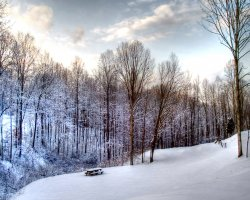 Safe Winter Holiday, Winter landscape overview