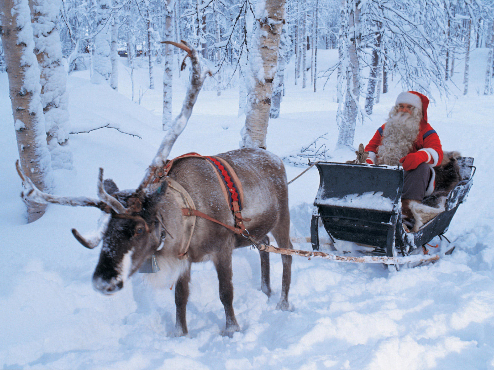 winter holiday lapland europe santa claus sleigh ride