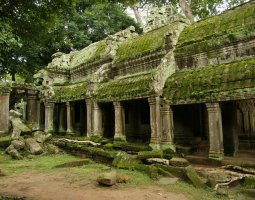Ta Prohm, Angkor, Cambodia, Ruind under moss and lichens