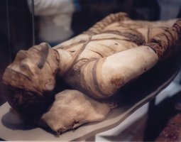 British Museum, London, England, Mummy