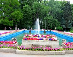 Bucharest Architecture, Romania, Herastrau Park, flowers