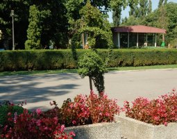 Herastrau Park, Bucharest, Romania, Dolphin of hedge