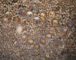 Paris Architecture, France, Bones on The Catacombs