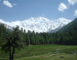 Tallest Mountains, Nanga Parbat, Pakistan, View from Fairy Meadows